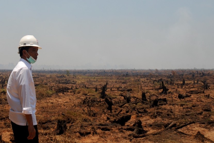 presiden-jokowi-tinjau-lahan-yang-terbakar-_151024083918-598